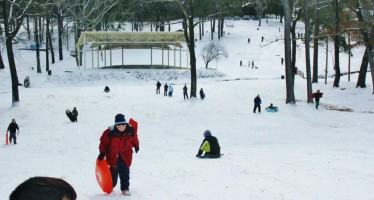 Local Sledding at Rowan Park in Fayetteville, N.C.